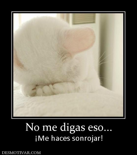 awww.desmotivar.com_img_desmotivaciones_6350_no_me_digas_eso.