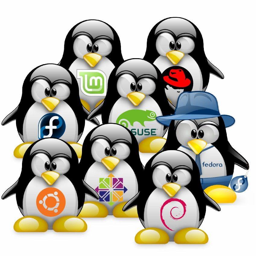 diocesanos.es_blogs_equipotic_wp_content_uploads_sites_2_2014_12_Linux.