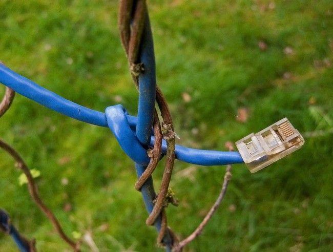 i.blogs.es_4d9fd4_cable_ethernet_650_1200.
