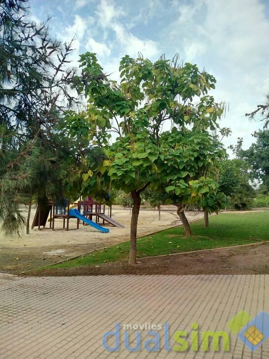 images.tapatalk_cdn.com_15_09_05_1da8a83ff5afab51d5703c0650af3c0e.