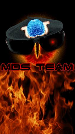 mds team 18.