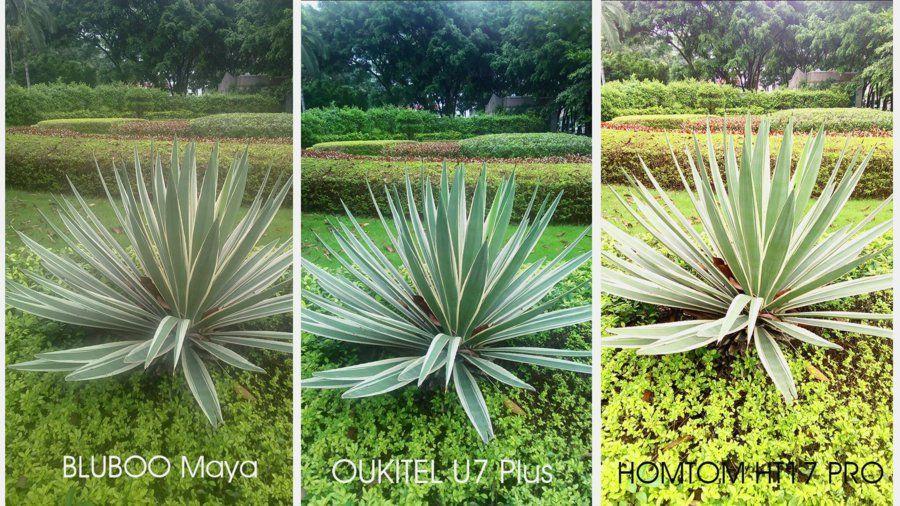 OUKITEL U7 Plus camera vs Bluboo maya vs Homtom HT17 pro (3).