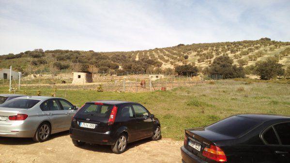 paisaje1.