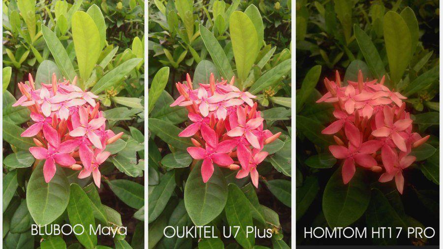 U7 Plus camera vs bluboo maya vs homtom ht17 pro-2.