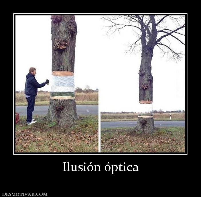 www.desmotivar.com_img_desmotivaciones_182177_ilusion_optica.