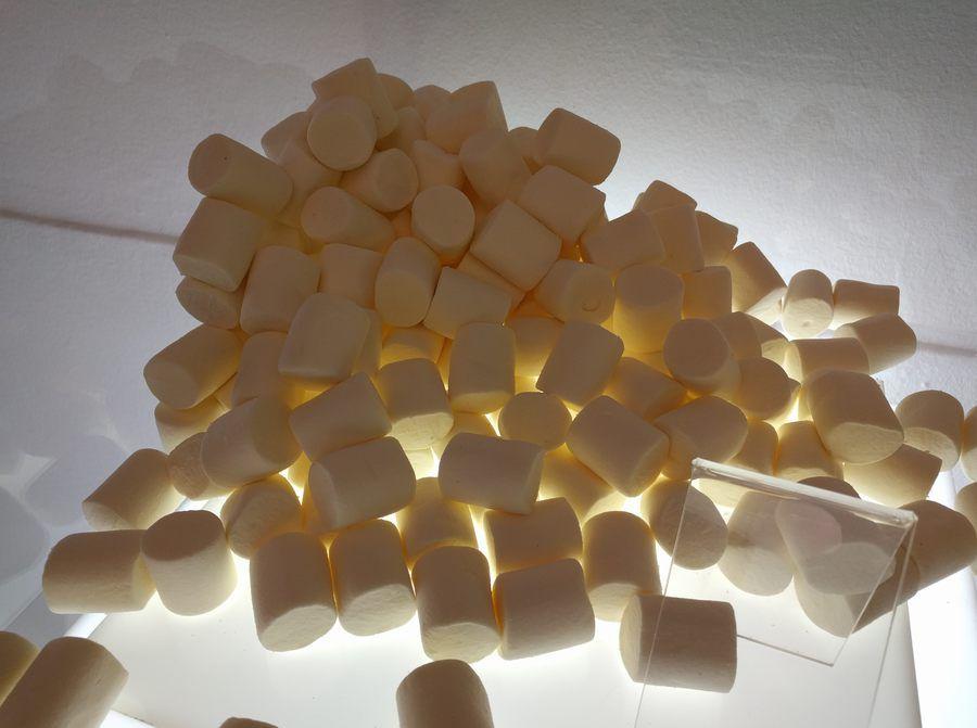 www.elandroidelibre.com_wp_content_uploads_2015_12_nexus_6p_camara_marshmallow.