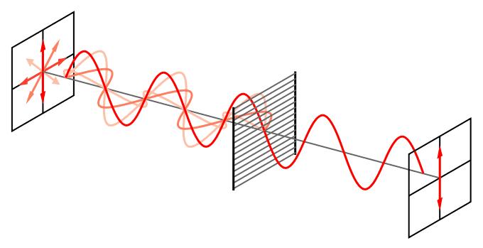 www.elandroidelibre.com_wp_content_uploads_2016_03_680px_Wire_grid_polarizer.svg_.