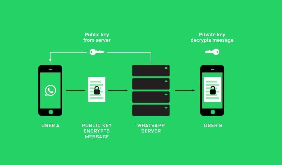 www.elandroidelibre.com_wp_content_uploads_2016_04_Whatsapp_Encryption_Proxima_1024x600.