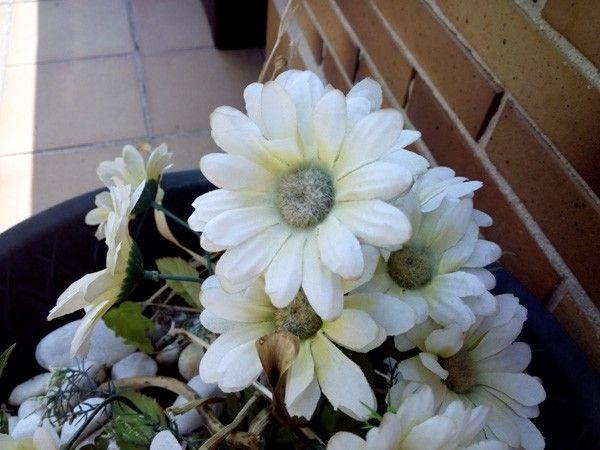 www.subemania.com_imagenes_IMG_20130719_170629.
